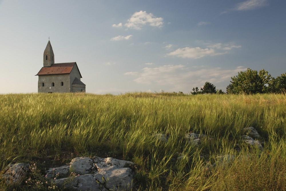 Die universele Kerk