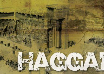 Daar bestaan geen twyfel dat Haggai in Jerusalem opgetree het nie, want dit is waar die oorspronklike tempel gestaan het en waar dit herbou is