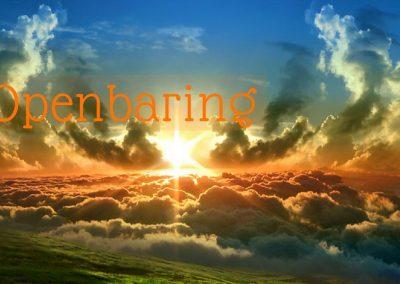 Tensy spyte van 'n groot verskeidenheid van interpretasies, behoort almal saam te stem dat Openbaring oor Jesus Christus gaan.