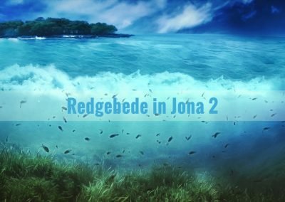 Die boek Jona is nie 'n allegorie of fantasie nie. Dit is 'n ware verhaal van 'n ware profeet (2 Kon 14:23-25) wat werklik in 'n skip na Tarsis gevlug het, wat deur 'n groot vis ingesluk is en wat drie dae en drie nagte later uitgespoeg is (Jona 1:3, 17; 2:10).